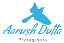 Aarush Dutta Photography